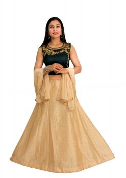 Self Design, Embroidered, Embellished Stitched Lehenga Choli (Multicolor)